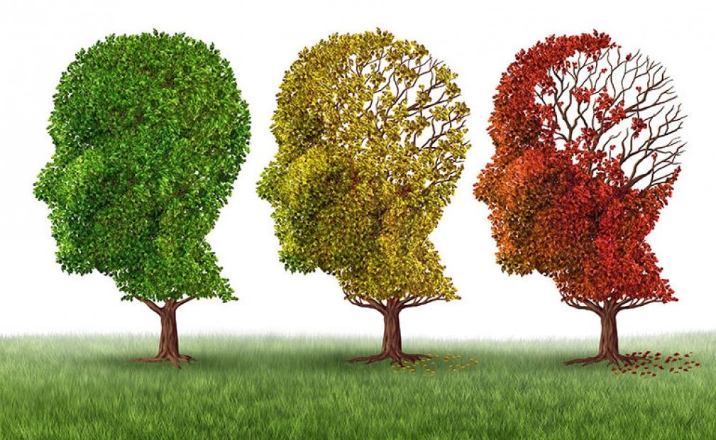 สมองฝ่อมากขึ้นในผู้สูงอายุที่มีการสูญเสียการได้ยินที่ไม่ได้รับการรักษา